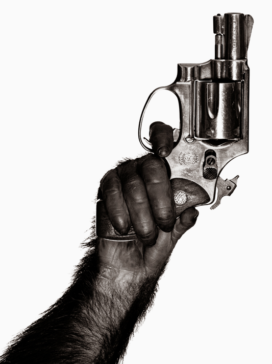 The story of one photograph, Monkey with a Gun by Albert Watson